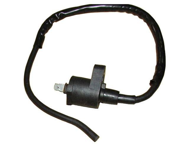 Coil Ignition Assy